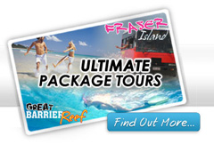 Fraser and Great Barrier Island Tours