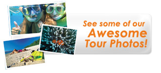 View our AWESOME Great Barrier Reef Tour Photos
