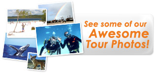View Our Awesome Fraser Island and Great Barrier Reef Package Tour Photos
