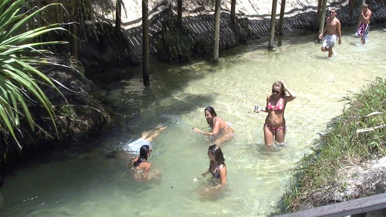 Cool Refreshing Eli Creek - Fraser Island