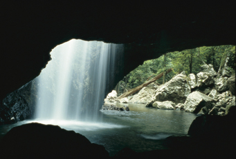 The Natural Arch, Springbrook National Park