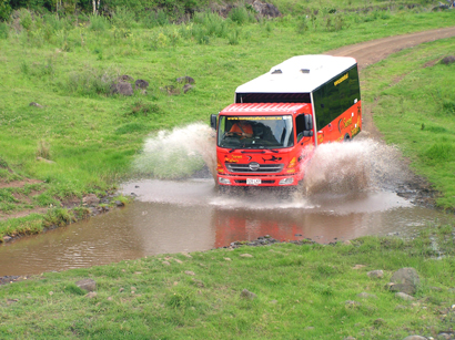 4WD Bus in search of Wildlife