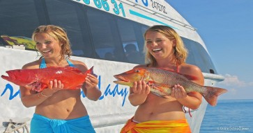 Great Barrier Reef Tour Photos 12