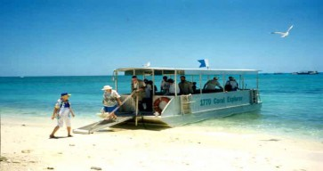 Great Barrier Reef Tour Photos 13
