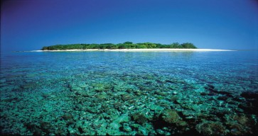 Great Barrier Reef Tour Photos 5